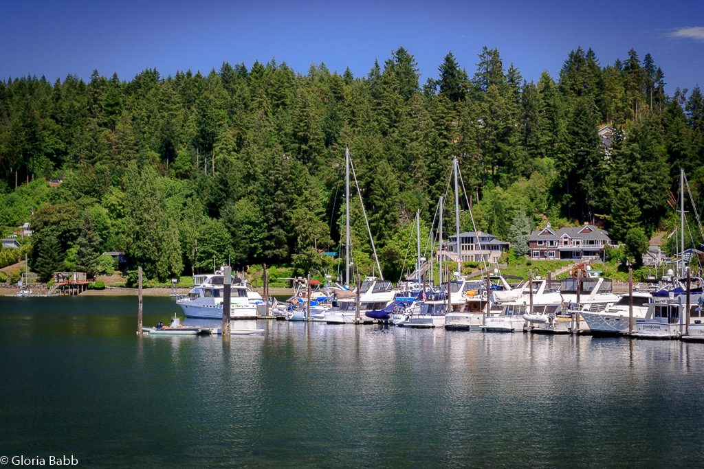 Gig Harbor Bay in the Summer!